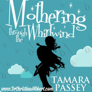 Mothering Through the Whirlwind-3 Sanity-Saving Strategies; www.DrChrisitnaHibbert.com