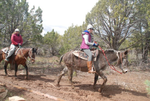 Zion Ponderosa Women's Adventure Retreat horseback riding www.DrChristinaHibbert.com