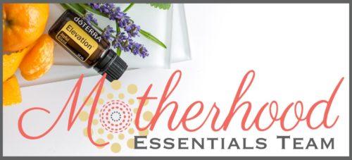 """""""Motherhood Essentials"""" Home Page w/Dr. Christina Hibbert www.DrChristinaHibbert.com www.MotherhoodEssential.com"""